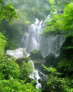 Hiryū fall, Hakone Town, Kanagawa Prefecture (near Yokohama) Beautiful Places In The World, Beautiful Places To Visit, Beautiful Waterfalls, Beautiful Beaches, Hakone, Yokohama, Japan Travel, Places To Go, Scenery