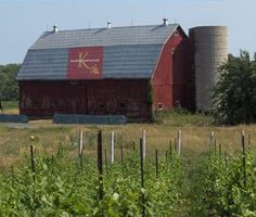 Wines of Canada everything you wish to know about Prince Edward County Wineries. Country Barns, Country Life, Country Living, Country Roads, Mill Farm, Farm Barn, Prince Edward County Ontario, Barn Photography, Little Barn