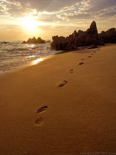 This image of footprints on a beach is an indexical sign, because a footprint represents the person who made them by stepping on the sand. Psalm Of Life, Psalm 25 5, Footsteps In The Sand, San Jose Del Cabo, Thing 1, Beach Scenes, Christian Quotes, Christian Messages, Photography