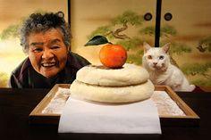 祖母と彼女の猫の愛らしい物語