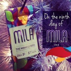 On the ninth day of Mila, turn a Mila Single into an ornament! Just attach some string and let the purple bag shine. What a great gift for a new prospect!