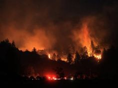 A wind driven vegetation fire eats up timber at the Yellow Jacket Ranch east of Highway 128, early Wednesday May 1, 2013 in Knights Valley, Calif., on the Napa and Sonoma County line. Crews battled two small wildfires on Wednesday in California wine country that were pushed by gusty winds. (AP Photo/The Press Democrat, Kent Porter)  www.setcomcorp.com/fire.html