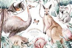 Australian Nursery, Australian Animals, Australian Art, Watercolor Map, Watercolor Animals, Watercolor Illustration, Business Postcards, Landscape Elements, Peace Art