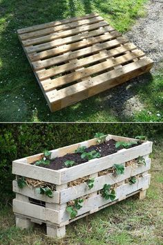 DIY pallet planter project - When picking the right plant, the result may look just perfect for your yard. You can also finish your planter with nice colors Strawberry Planters Diy, Strawberry Beds, Strawberry Garden, Strawberry Patch, Diy Planters, Planter Boxes, Pallet Planters, Pallet Gardening, Garden Pallet