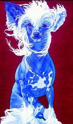 black chinese crested art - Google Search