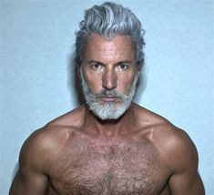 The 25+ best ideas about Grey Beards on Pinterest | Bearded men hair, Perfect beard and Thick beard