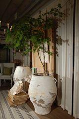 Italian Olive jars Plus Modern Planters, Vintage Planters, Outdoor Pots, Outdoor Living, Savannah Smiles, Olive Jar, Italian Olives, Mediterranean Style Homes, Rustic Contemporary