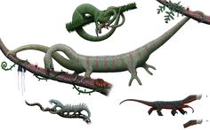 Cephalopodosaurs and dwarf kahydron from Snaiad by Preradkor.deviantart.com on @DeviantArt