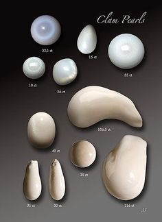 Shanghai Gems S.A. - Natural Pearls Species