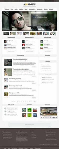 Aggregate WordPress Theme - Elegant Themes