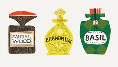 Bottle illustrations for an infographic about which aromatherapy oils to use around the house.