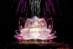 「アートアクアリウム2015」日本橋で開催 - 約5000匹の金魚が泳ぐ水中アート | ニュース - ファッションプレス