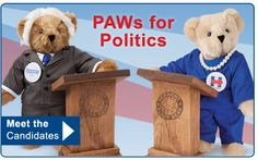 BEAR Support for Your Favorite Presidential Candidate #VoteBear2016