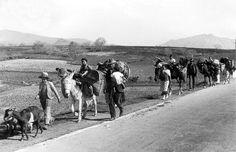 Fotografía de malagueños regresando tras la contienda. La Guerra Civil Española tuvo una duración aproximada de 7 meses, desde el 18 de Julio de 1936 hasta el 8 de Febrero de 1937, cuando la ciudad es tomada por las tropas sublevadas.
