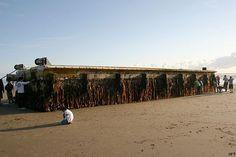 Doca de 165 toneladas arrancada por tsunami é achada nos EUA - internacional - geral - Estadão
