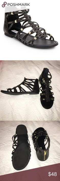 NWOT Cilow Steve Madden sandals New without tags black snake print sandals! Have gold accidents on them as well as the zipper is gold. Never been worn Steve Madden Shoes