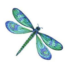 Image result for dragonfly