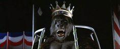 """King Kong"" (1976) #KingKong"