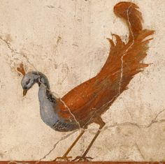 Peacock (detail) in Wall Fragment with a Peacock, Roman, about A.D. 70