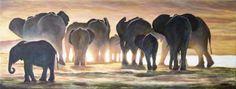 Elephants in Light by andylloyd.deviantart.com on @DeviantArt