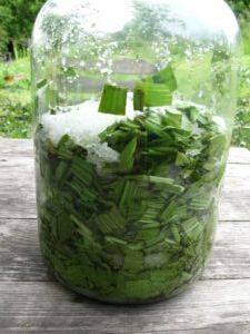 Korn, Pickles, Cooking Tips, Glass Vase, Herbs, Health, Gardening, Syrup, Chef Recipes