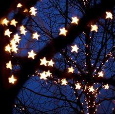 Twinkling lights or strands of glowing stars in the trees