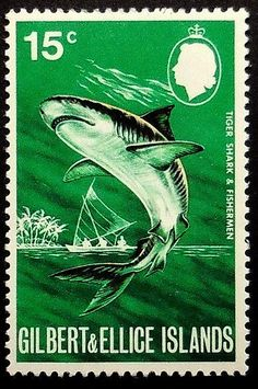 Handcrafted By Stamp Tiger Shark & Fisherman -Framed Postage Stamp Art 18880 Commonwealth, Vanuatu, Species Of Sharks, Postage Stamp Art, Stamp Collecting, Ellice Islands, Moleskine, History, Countries