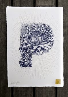 My name is Valerie Hugo. I'm a French illustrator specialized in silkscreen printing and wall painting. For my solo exhibition at Slow Gallery, I achieved a complete floral and animal alphabet.