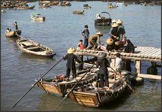 Junk Harbour Cheung Chau
