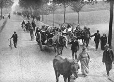 belgian refugees 1914 - Google Search