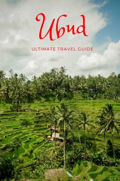 The Awesome Things To Do In Ubud Make It Essential For Any Itinerary Of Bali, Indonesia. Its A Paradise For Nature Lovers You Can Hike Batur Volcano, Visit The Monkey Forest, Swim In Waterfalls And See The Tegalalang Rice Fields. In spite of the fact that Bali Travel Guide, Travel Advice, Asia Travel, Travel Guides, Travel Tips, Spain Travel, Travel Essentials, Solo Travel, Budget Travel
