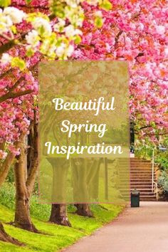 Beautiful spring inspiration with spring aesthetic and spring quotes! #spring #inspiration #quotes #aesthetic Spring Quotes, Spring Wallpaper, Spring Aesthetic, Spring Pictures, First Day Of Spring, Wallpaper For Your Phone, Spring Home Decor, Open Window, Hello Spring