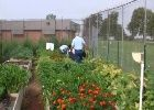 Project GROW at the Central Ohio Youth Center
