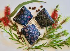 Flannel Flower, Cute Coin Purse, Kangaroo Paw, Bugs And Insects, Making Out, Nativity, Flora, Print Design, My Etsy Shop