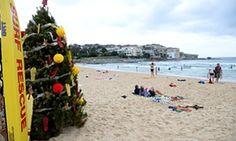 Christmas tree on Bondi beach