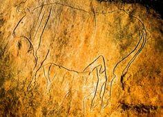 Prehistoric cave drawings in La Grotta del Romito, Calabria Beautiful Places To Travel, Amazing Places, Art Pariétal, Paleolithic Art, Cave Drawings, Rough Diamond, Ancient Art, Prehistoric, Rock Art