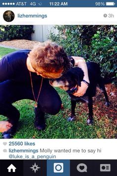 Liz posted this awwww Luke's dog Molly misses him :')