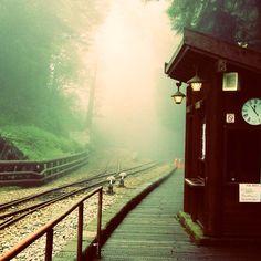 阿里山神木站....