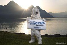 Ambiente: una pedalata per salvare l'Artico