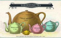 Postcard Teas: Darjeeling 2nd Flush from Mineral Springs estate