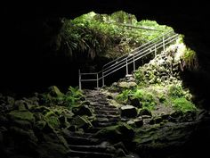 Ape caves entrance in Washingthion