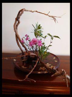 Ikebana. El arte del arreglo floral. El arte del arreglo floral basa sus principios en la línea, el ritmo y el color como medios para conseguir una recreación del crecimiento floral. Mientras el mundo occidental ha enfatizado siempre la cantidad y...