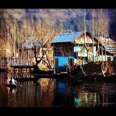 Dal Lake, Srinagar (Kashmir, India)