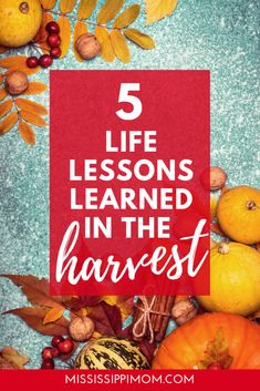 5 Life Lessons Learned in the Harvest - Faith, Friendship, Hope and More! Christian Marriage, Christian Parenting, Christian Living, Christian Women, Spiritual Formation, Spiritual Disciplines, Love Your Family, Lessons Learned In Life, Christian Encouragement