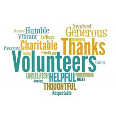 Some words that perfectly describe all the attributes of our wonderful volunteers