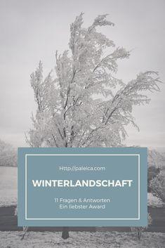 Weather, Art, Winter Landscape, Plants, Nature, Travel, Kunst, Weather Crafts, Art Education