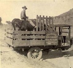 Calabasas public market truck, Manuel Correia visible on cow in truck bed. San Fernando Valley History Digital Library.