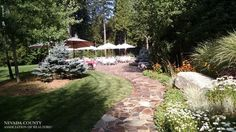 Grounds of our dream-home in Nevada City.