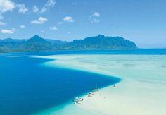 観光局公認ハワイスペシャリストがおすすめ! 4泊6日、初めてのハワイの過ごし方~前編~ | ことりっぷ