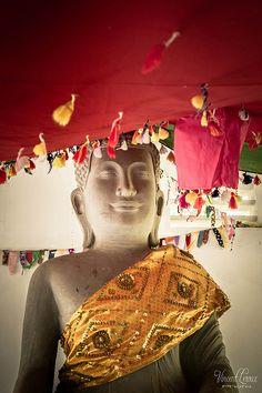 Temple bouddhiste dans le parc national de Kep - Cambodge